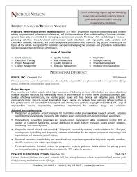 Brand Manager Resume Sample Best Example