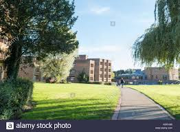 100 The Lawns Cottingham Student Accommodation And Student