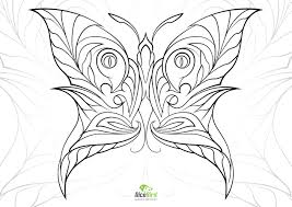 Butterfly Free Adult Coloring Pages Animals