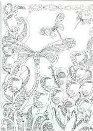 Dragonfly Coloring Pages For Adults Simple Dragon Fly Page Free Pictures