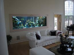 aquarium dans le mur aquarium construction de notre maison passive dans le namurois