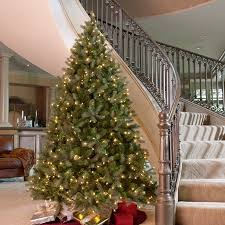 9 Ft Downswept Douglas Fir Medium Clear Pre Lit Christmas Tree