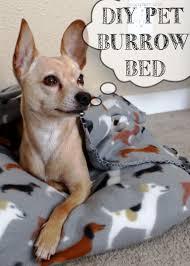 Burrowing Dog Bed by Diy 10 Minute Pet Burrow Bed Shaina Glenn