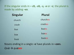 The plural