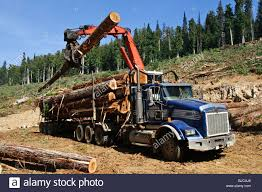 Logging Truck Bc Canada Stock Photos & Logging Truck Bc Canada Stock ... China Wood Transport For Forest Logtimber Truck Trailers Sale Self Loader Log For Best Resource Mounts Bucket Of The Future All Access Equipment 6x4 Howo Sinotruk Selfloader 20ft Container Trailer Sidelifter Logging Image American Lands Washington Company Llc 21410 Se 248th Forestry Maine Financial Group Tow Truck 2015 Serco 160 Spokane Wa 8537902 Petersen Industries Lightning Grapple Trucks Loading Concrete Mixer Available Resale In Raipur Argo