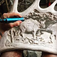 Moose Shed Antler Forums by This Moose Antler Art Gallery By Samuel Côté Age 20 Is Jaw