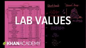 bun levels normal range introduction to lab values and normal ranges health medicine