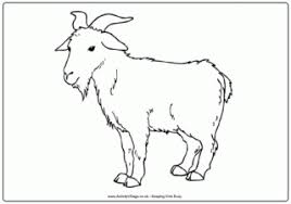 Goat Colouring Page 3
