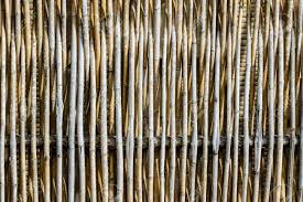 100 Bamboo Walls Of The Bungalow Stock Photo Picture And Royalty Free