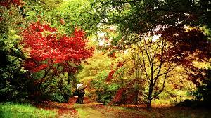 balades chambres d hotes séjour en chambres d hôtes pour vos balades d automne découvrez