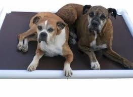 Chew Proof Dog Beds by Chew Proof Dog Bed Stunning Indestructible Dog Beds For Chew Dog