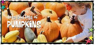 Pumpkin Patch Waco Tx 2015 by Season 10 September 30th To November 18th Fiddlesticks Farms