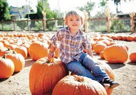 Fargo Pumpkin Patch by Palisades Malibu Ymca U0027s Pumpkin Patch Opens Oct 1 U2013 Palisades News