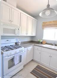 Sage Green Kitchen Cabinets With White Appliances by Best 25 Paint Cabinets White Ideas On Pinterest Painting