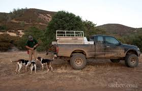 100 Hunting Trucks New Law Banning Dogs In Bear Hunting Has Immediate Impact The