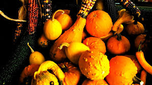 Can Guinea Pigs Eat Pumpkin Seeds by Can You Eat Decorative Gourds The Answer To The Question You