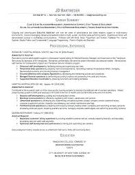 Examples Of Summaries For Resumes Summary In Resume Enchanting Trainer About