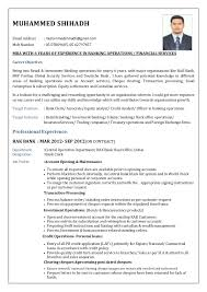 Resume Format For Banking