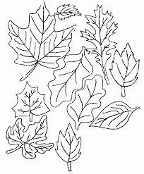 To Print Thanksgiving Leaves Coloring Pages 52 For Seasonal Colouring With