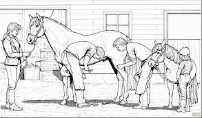 Astonishing Horse And Pony Coloring Pages With Horses Online Free