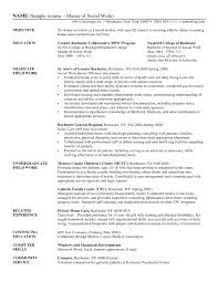 Awesome Collection Social Work Resume Examples Of Resumes