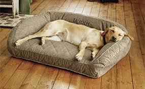 memory foam bolster dog bed orvis memory foam bolster orvis
