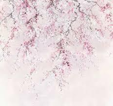 komar fototapete vliestapete kirschblüten glatt bedruckt geblümt floral realistisch 300 x 280 cm