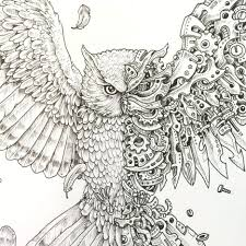 Colorama Coloring Book Owl Enchanted Forest Creative Haven Owls Pdf Preview Expect Dropping Large Size