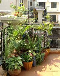 Balcony Garden Ideas In India Images