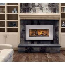 Napoleon GI3600 Natural Gas Fireplace Insert
