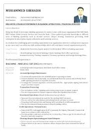 Banker Resume Samples Format Sample Banking Resumes Examples Example