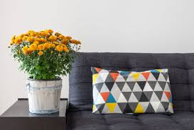 Furniture Using Chic Raleigh Furniture Stores For Cozy Home