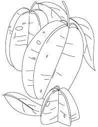 Two Starfruit With Half Coloring Pages