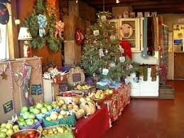 Santa Cruz County Christmas Tree Farms by Find The Right Holiday Tree At Farms In Northern California U2013 The