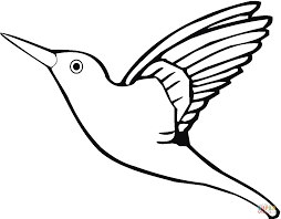 Hummingbirds Coloring Pages And Hummingbird