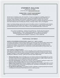 Web Designer Resume Sample Free Download Best Insurance Template Resumes Example Bsw