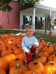 Chatham Kent Pumpkin Patches by Danielle Author At Northeast Ohio Family Fun Page 31 Of 60