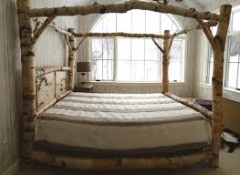 Picture Canopy Bed Frame Queen SurriPui