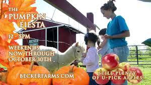 Pumpkin Farm Clarence Ny by Becker Farms Pumpkin Fiesta Youtube