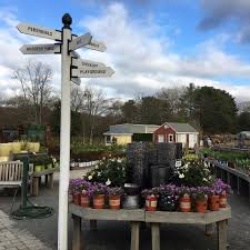 Christmas Tree Shop North Attleboro by Briggs Nursery Home Facebook