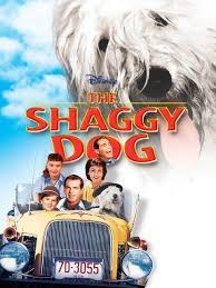 Kitchen Sink Film 1959 by Amazon Com The Shaggy Dog 1959 Jean Hagen Tommy Kirk Tim