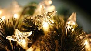 Cinco Express Tree Stand 10 Christmas