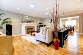 green rugs for living room home design