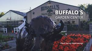 Christmas Tree Shop Henrietta Ny by Buffalo Nursery U0026 Garden Center Russells Tree And Shrub Farm