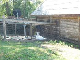 Built Rite Sheds Utah i read the news today oh boy from todd u0027s mind