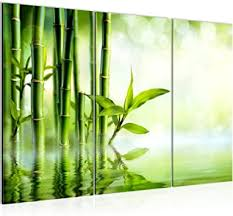 de runa bambus bild wandbilder wohnzimmer