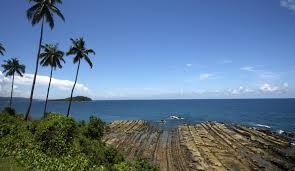 Mr Jingles Christmas Trees West Palm Beach by Andaman Islands Jpg