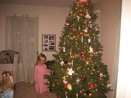 Christmas Trees Prelit Slim by Christmas Christmas Tree 8ft Trees Slim Frosted Foot Pre Lit Ge