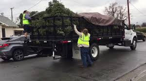 100 Flatbed Truck Rental Christmas Tree Collection With Herc S And Enterprise