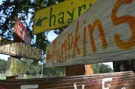 Pumpkin Patch Restaurant Houston Tx by P 6 Farms
